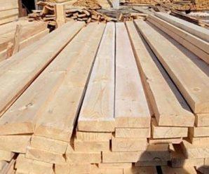 Осина в строительстве. Характеристики, свойства, плюсы и минусы