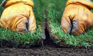Укладываем рулонный газон своими руками