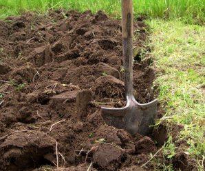 Обработка и уход за почвой осенью