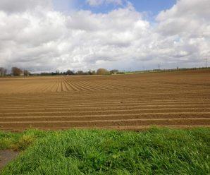 Что такое земля, грунт и почва? Какая разница между ними?