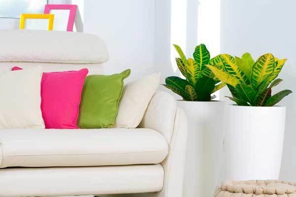 как создать уют в съемной квартире