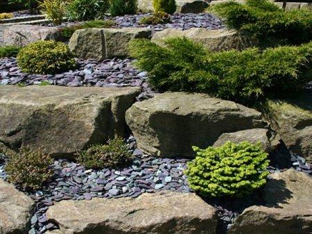 Каменные сады на даче